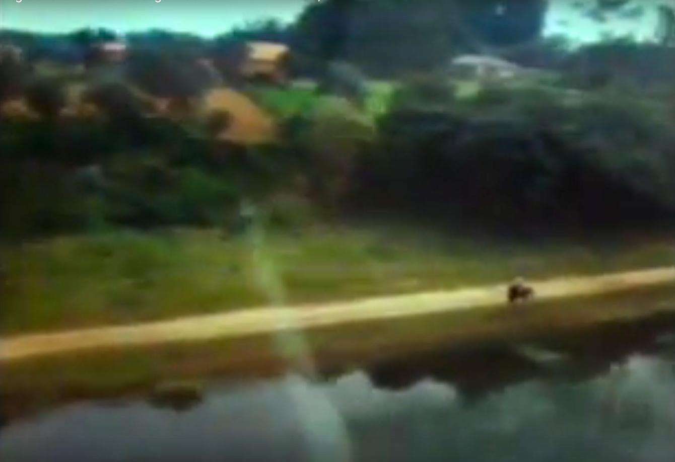 1980-PATEIRA-CID_1